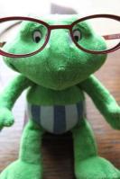 Gregre lunettes BLOG